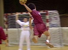 ハンドボール初心者向け基本練習メニュー実践解説DVD
