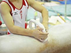 体操 ゆか・あん馬DVD