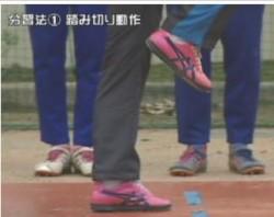 habatobi-joutatsukakumei-2-4