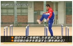 habatobi-joutatsukakumei-2-kokansetsu