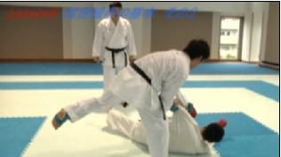 karate-saisoku-nagewaza