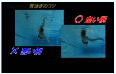 suieispeedup-porgram-seoyogi