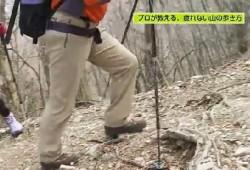 tozan-noborikata