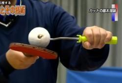 hikashiyama-miyaki-4-1