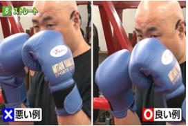boxingjoutatsu-straighthakamaekatahitotsude