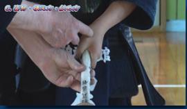 shounenkendou-shinainofurikatagaantei