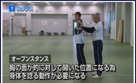 kakumei-stance-saijuuyou
